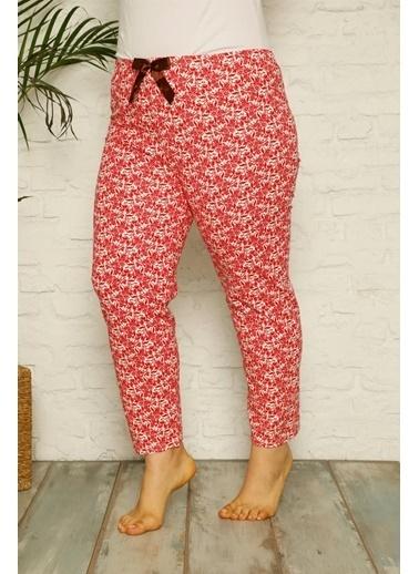 Akbeniz Kadın Pamuklu Büyük Beden Alt Pijama 27328 Kırmızı